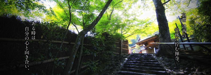 京都洛西の竹林に佇む禅寺。ある時は自分の心と向き合い、