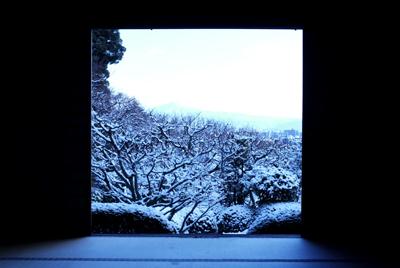 本堂から庭園